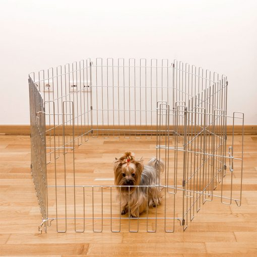 Animal cage with a door and a dog