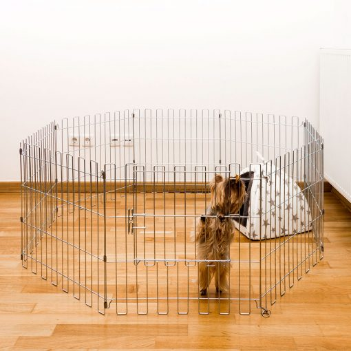 A dog climbing the animal cage